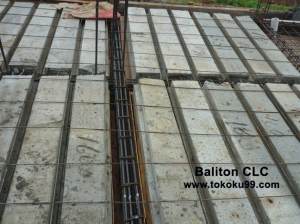 Baliton CLC13